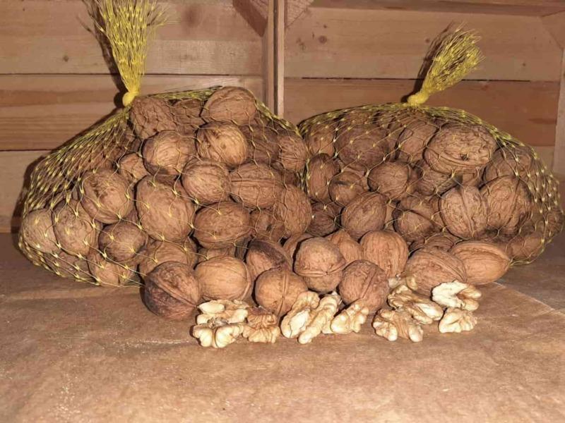 bleggiane-walnuts
